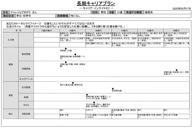 キャリアプラン_page-1